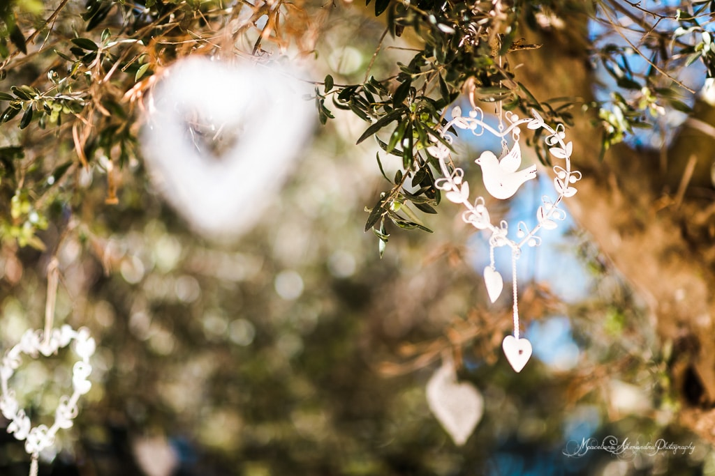 Decoration for the wedding at Minthis Hills , hanging from the olive tree.
