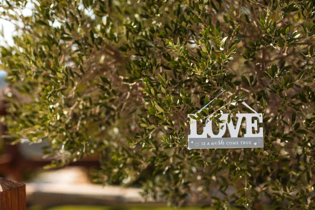 Love sign hanging on the tree